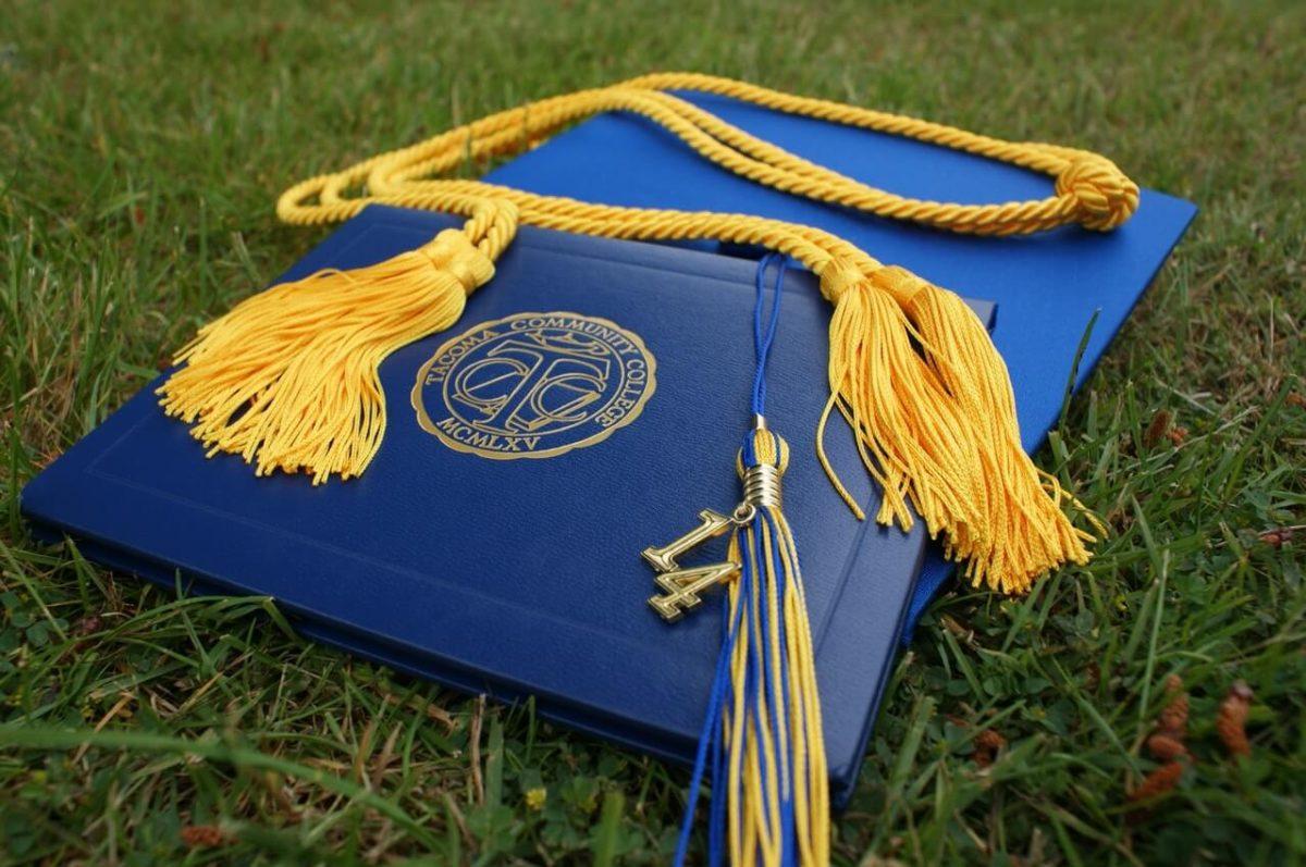 Niebieski-certyfikat-z-zoltym-fredzlem